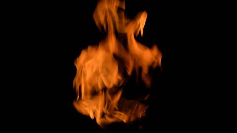 Fierce fire flames 01 Live Action