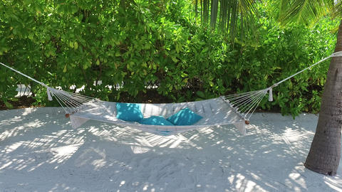hammock between palm trees on tropical beach Footage
