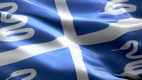 Flag Martinique Animation