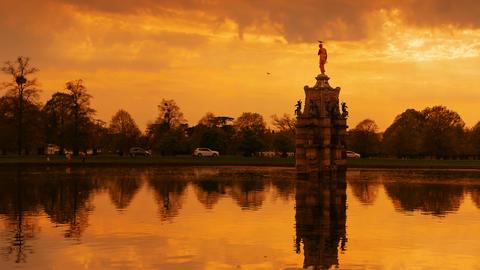 Bushy Park, Hampton Court, London, England, UK Footage