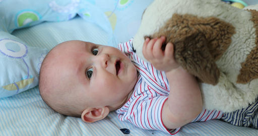 Cute 5 Month Old Baby Boy Playing With a Plush Dog Footage
