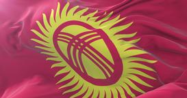 Flag of Kyrgyzstan waving at wind in slow, loop Animation