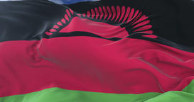 Flag of Malawi waving at wind with blue sky in slow, loop Animation