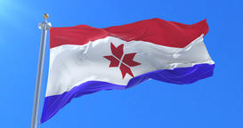 Flag of the Republic of Mordovia waving at wind in slow in blue sky, loop Animation