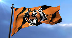 Cincinnati Bengals flag, american football team of the National Football League Animation