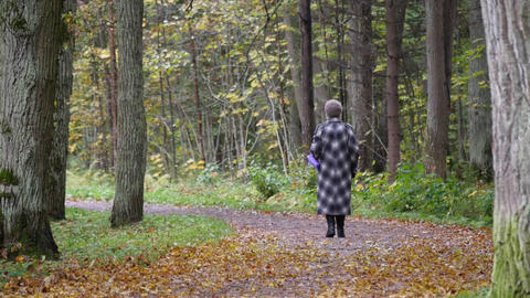 Elderly woman walking in the Park Live Action