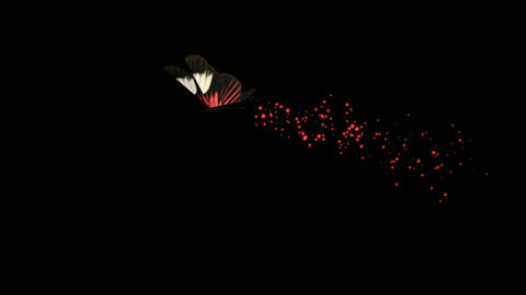 Butterfly Red B blur Animation