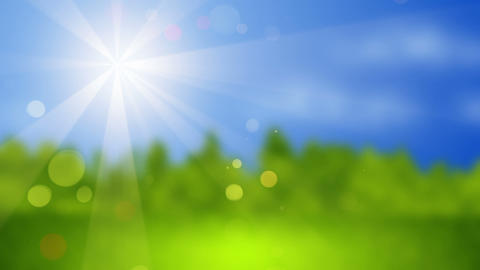blurred landscape at sunny day seamless loop Stock Video Footage