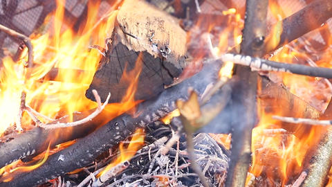 Wood Burning in Outdoor Fire Pit on a Cool Summer Footage