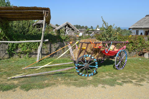 The cart without a horse with hay and pumpkins Photo