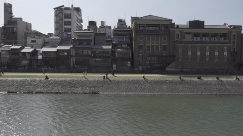 京都・鴨川河川敷を歩く人々 ライブ動画