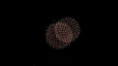 fireworks Live Action
