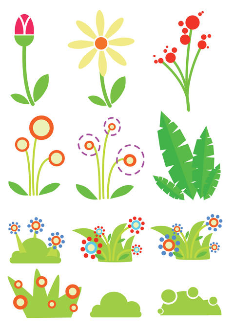 collection of various funny and colorful flowers and herbs フォト