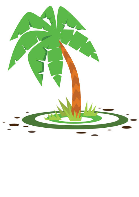 small green palm フォト