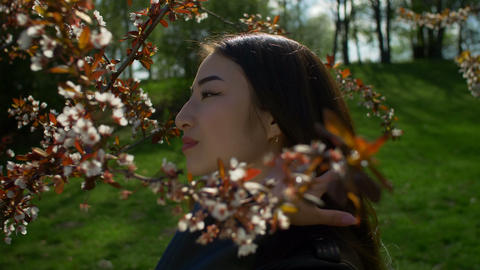 Relaxed asian girl in blooming cherry blossoms Footage