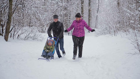 Young Funny Family Is Sledging In Winter-landscape stock footage