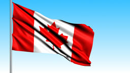 Beautiful flag of the Canada waving in the wind Animation