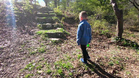 boy climbing a stone stairs in the woods Footage