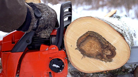 Chainsaw Cutting Wood Slow Motion 영상물