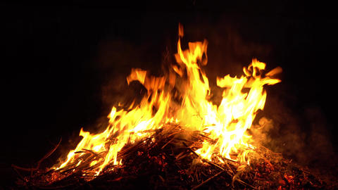 burning fire in nature. bright flames Footage