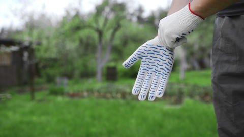Man dresses working gloves on his hands at the garden, preparings for work Footage