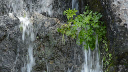 Natural water flowing and falling in the mountain in a water spring Footage