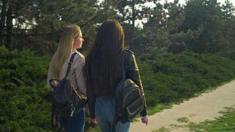 Elegant girls strolling in parkland at sunset Footage