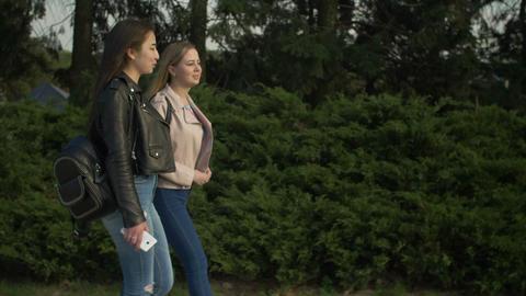Happy teenage girls enjoying nature in parkland Footage
