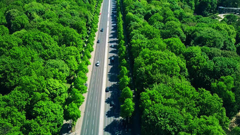 Aerial view of forest highway traffic Footage