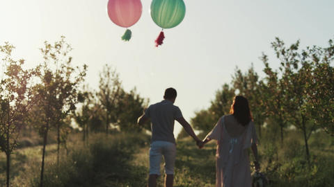 Couple walking in a apple garden and holding hands at sunrise Live Action