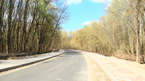 Asphalted road with pavement in spring park 영상물