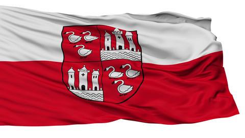 Isolated Zwickau city flag, Germany Animation