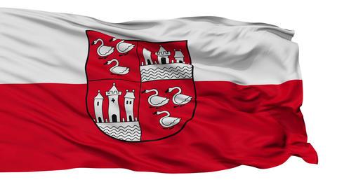Isolated Zwickau city flag, Germany Stock Video Footage