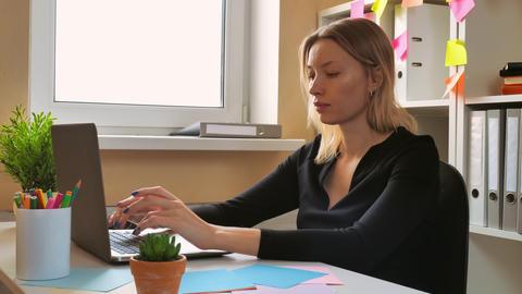 portrait focused employee use computer Footage