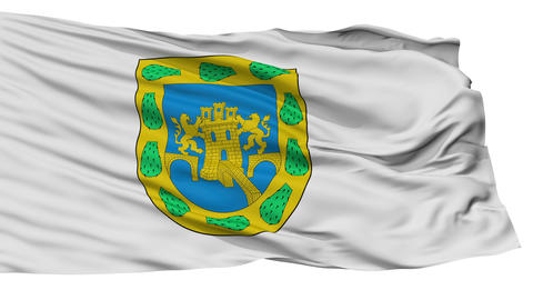 Isolated Mexican Federal District city flag, Mexico Animation