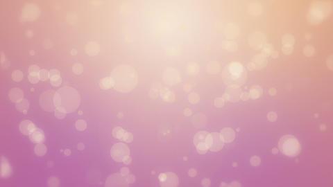 Pink orange bokeh background Animation