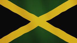 Jamaica flag waving animation. Full Screen. Symbol of the country Footage