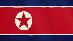 North Korea flag waving animation. Full Screen. Symbol of the country Footage