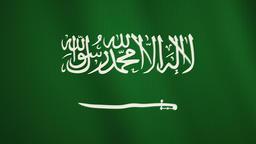 Saudi Arabia flag waving animation. Full Screen. Symbol of the country Footage
