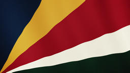 Seychelles flag waving animation. Full Screen. Symbol of the country 영상물