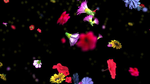 Colorful big flowers background in 4K, Stock Animation