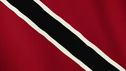 Trinidad and Tobago flag waving animation. Full Screen. Symbol of the country Footage