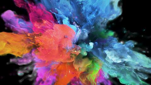 Color Burst - colorful pink blue smoke explosion fluid particles alpha matte Animation