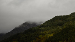 4k HD Time lapse of bad weather over mountainous forest Footage
