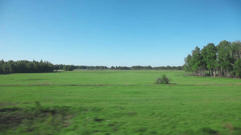 Siberian landscape - view from train Footage