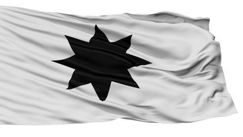 Isolated Alphen aan den Rijn city flag, Netherlands Animation
