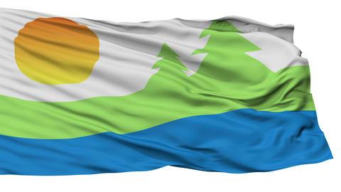 Isolated Kawartha Lakes city flag, Canada Animation