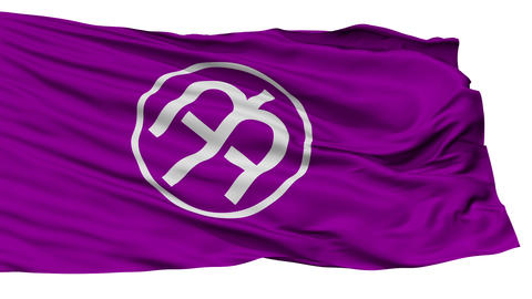Isolated Tama city flag, prefecture Tokyo, Japan Animation