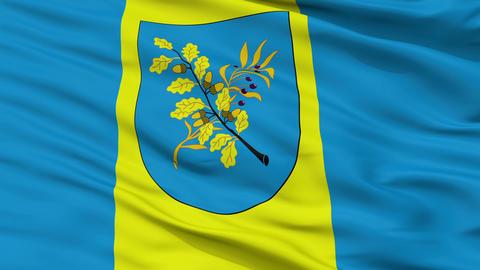 Closeup Dziarzynsk city flag, Belarus Animation