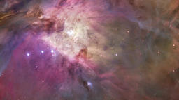Flying through star field Orion Horsehead Nebula Footage